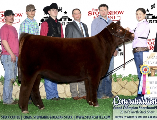 Ft Worth Stock Show Results
