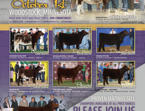 September Ad – Shorthorn Country