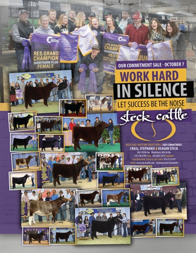 Steck Cattle | Work hard in Silence Let Success be the Noise
