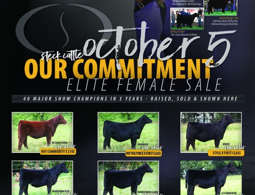 OCTOBER 5, 2019 Our Commitment Sale